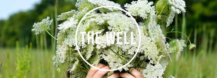 the_well 2017_banner13-2