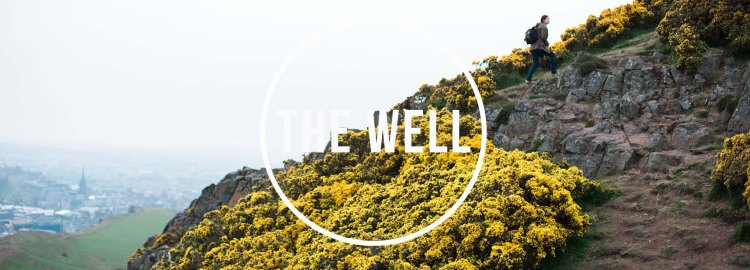 the_well 2017_banner17
