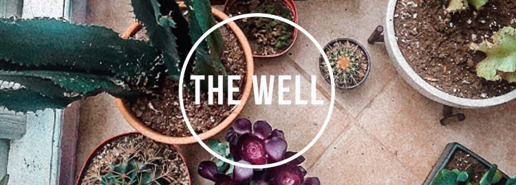 the_well 2017_banner19