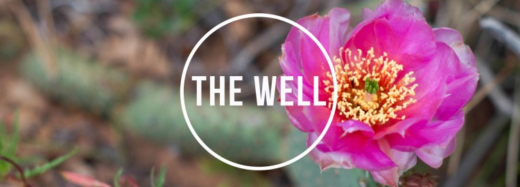 the_well-2017_banner3