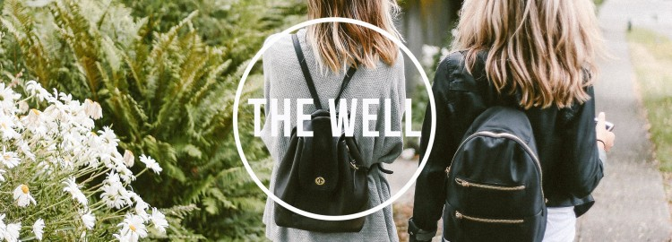 the_well 2017_banner23