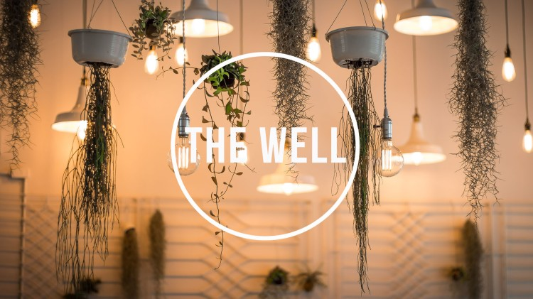 the_well 2017_main29